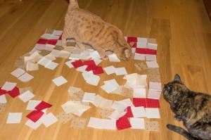 cats_and_fabrics